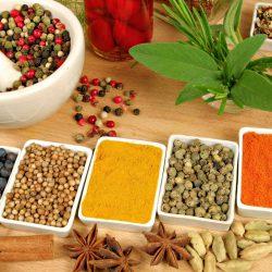 Nutrição | Alimentos Termogênicos