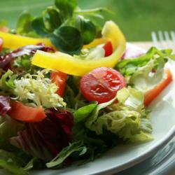 Diário | Emagrecimento, Celulite, Treinos e Alimentação