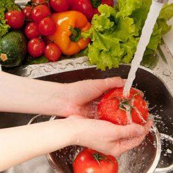 Nutrição | Contaminação de Alimentos