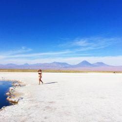 Deserto do Atacama #3 | Salar de Tara, Geisers de Tatio, Laguna Cejar