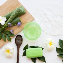 Alternativas naturais para produtos de higiene