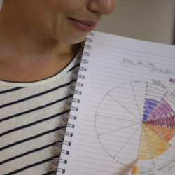 Roda da Vida: Vida profissional em foco